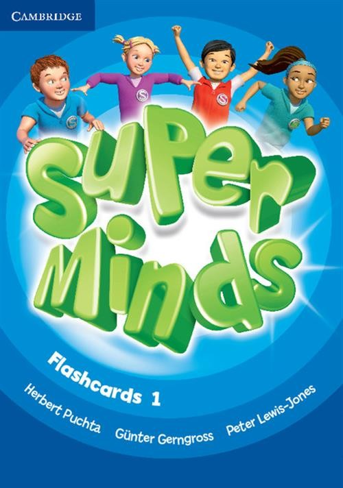 Super Minds 1 Flashcards